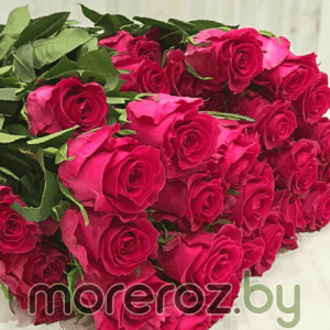 Купить 25 роз премиум по суперцене