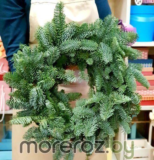 Рождественский венок из Нобилиса без декора
