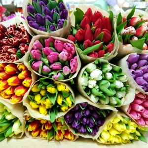 Тюльпаны в упаковке поставщика
