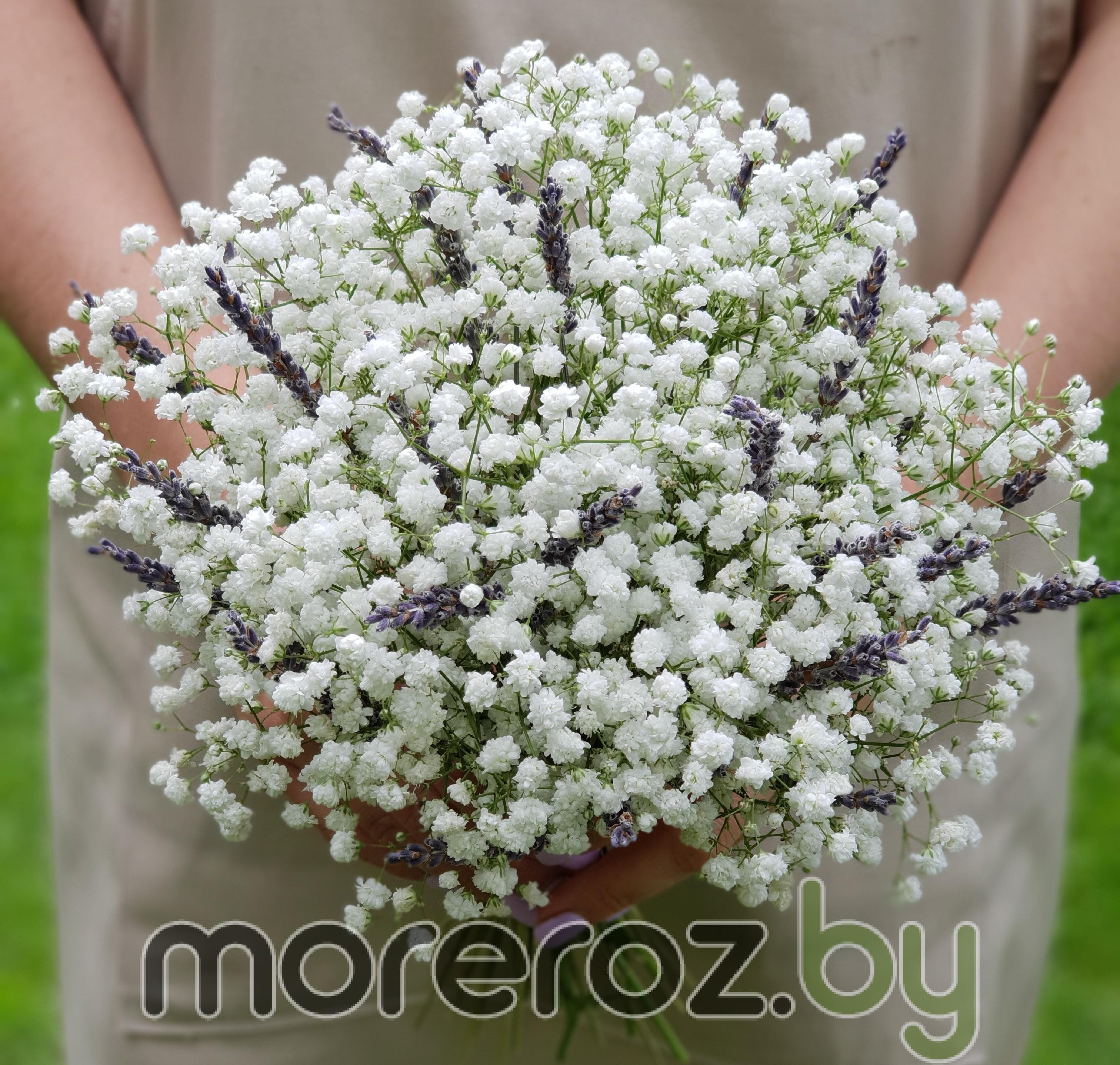 Букет невесты с белой гипсофилой и лавандой