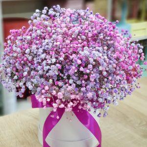 Коробка с лилово-розовой гипсофилой