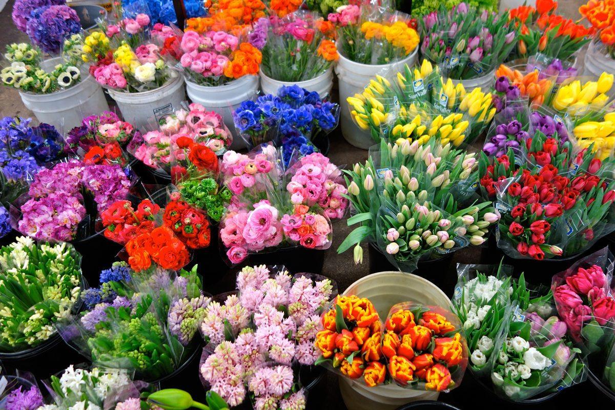 Оптовая продажа цветов на срезанных цветах